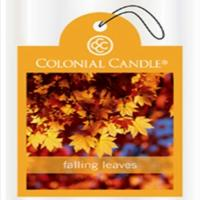 COLONIAL CANDLE 자연방향제 낙엽