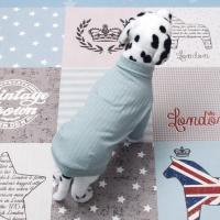 [펫딘]골지 강아지옷 폴라티 민트