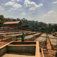 에티오피아 리무 볼렌소 내추럴 (Ethiopia Limu Wolenso) 200g
