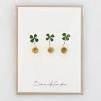[향기카드] 압화미니카드 - 네잎클로버