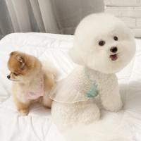 강아지원피스 시스루 쮸리크롭탑