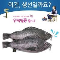 ★무료배송 [피쉬앤팬시] 생선필통 우럭필통