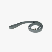 Color Leash (Grey)