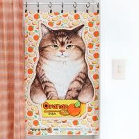 패브릭 - 오렌지박스 고양이 (점보사이즈 )