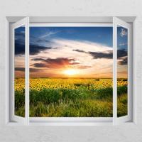 ck789-노을진해바라기꽃밭_창문그림액자