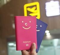 미스터 패스포트(Mr.Passport)