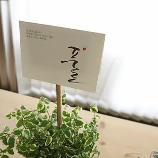 마음도둑 한글카드-nature (5종세트)