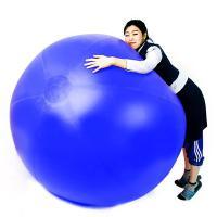 1.5m 공굴리기 공 (블루)