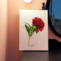 ga566-캔버스액자33.4x24.2_붉은색작약꽃