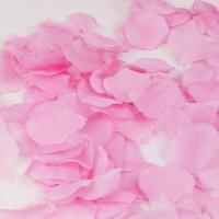 이벤트 꽃잎 [핑크]