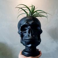 블랙 컬러 해골 중형 석고상 화분 35cm 내외+리본2개