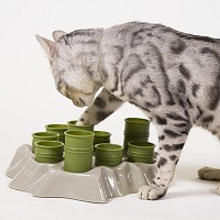 아이키오 행동발달형 애묘식기(고양이용/캐나다산)