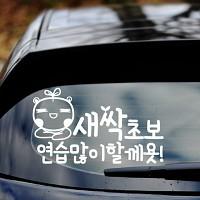 새싹초보 - 초보운전스티커(474)