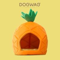 [도그웨그 DOGWAG] 상큼한 파인애플 하우스