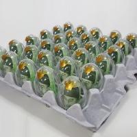 계란한판이벤트 DIY세트