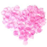 프로포즈 장미꽃잎 (핑크)