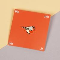 [pinpinpin] 멋쟁이 새 핀