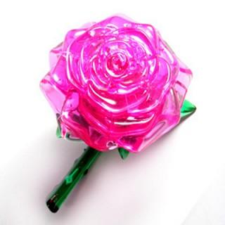 핑크로즈(Pink Rose)