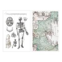 Miccudo 프린트-온 스티커 (17.Map)