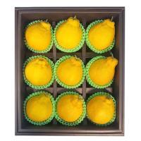 과일선물세트 소담세트 금한라봉(9개입)3kg