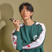 Korea Newtro SweatShirts Green