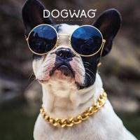 [도그웨그 DOGWAG] 애완용 체인 금목걸이 프렌치불독