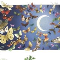 [챔버아트] A5149 초원의 나비 500조각 직소퍼즐