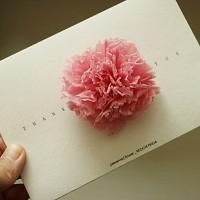 [프리저브드플라워 꽃이핀다] 감사해요 - pink 카네이션 봉투