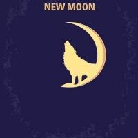 GX5244 New moon size30x40cm(물감2배)