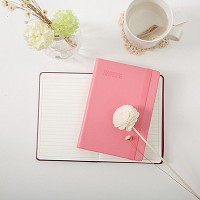 The notebook First edition [A6]