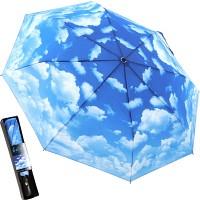 클리어 스카이 - 3단자동우산