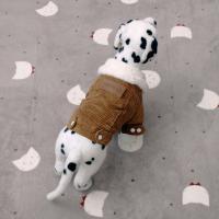 [펫딘]코듀로이 양털카라 똑딱이 강아지옷자켓BR E012