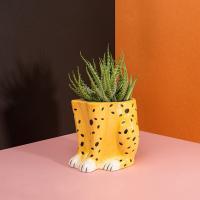 [도이] 어반정글 치타 인테리어 도자기 화분