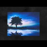 [나이트팝] 몽환의 숲-캔버스 조명액자