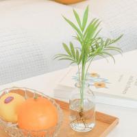 메이크정글 GLASSY NO.2 공기정화식물 유리병
