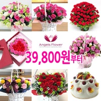 [엔젤스플라워]전국퀵배송 꽃배달 꽃바구니 축하식물