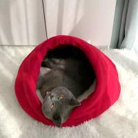 고양이집 하우스 쿠션 방석 CT-7788 소라
