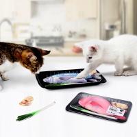 펫데일리 고양이 캣닢 생선 매운탕세트 장난감