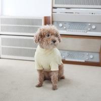 강아지옷 겨울니트 파인 니트 하이넥 스웨터(크림)