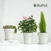 샤오미 로팟 스마트 화분 앱 연동 식물 성장 관리