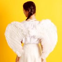 천사날개-화이트(대)