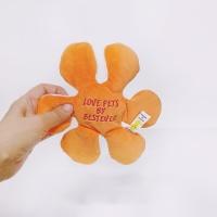 Love Pet Squeaky Boomerang (부메랑)