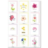홀마크 생일축하감사 미니카드 꽃 12종세트