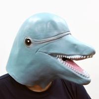 돌고래가면