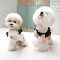 강아지겨울옷 겨울올인원 폴링올인원