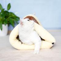 고양이집 숨숨집 고양이방석 마약방석 터널하우스