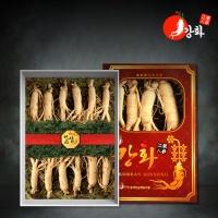[강화초지인삼] 명품 수삼 1채 500g (8-10뿌리)