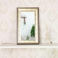 고급 소품 미니거울-96S(거울 20x40cm)