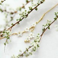 [러쉬룸] [프랑스직수입/코퍼스크리스티] cherry blossom