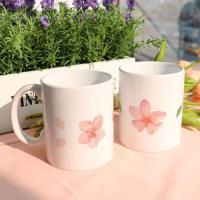 tk215-디자인머그컵2p-벚꽃잎